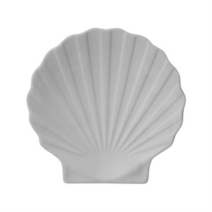 SHELL | CERAMIC BISQUE