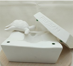 PLASTER MOLD | TURTLE